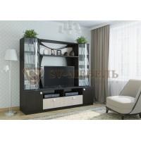 Мебельная стенка Гамма-15-тумба ТВ