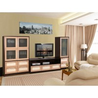 Мебельная стенка Квадро-4