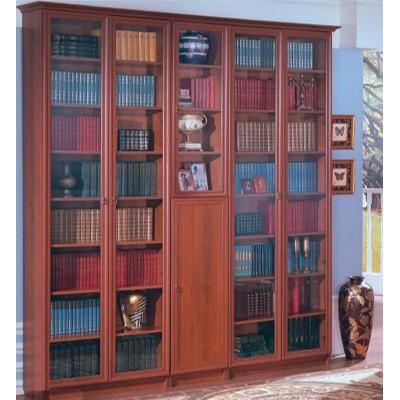 Книжный шкаф  Гала 5.11