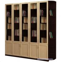 Книжный шкаф  Гала 5.5У