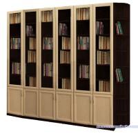 Книжный шкаф  Гала 6.6У